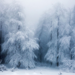 LOOK: Here are 13 photos of winter landscapes that will make you think you're dreaming
