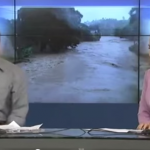 Guy's cellphone rings during live TV broadcast, handles it in the most hilarious way possible