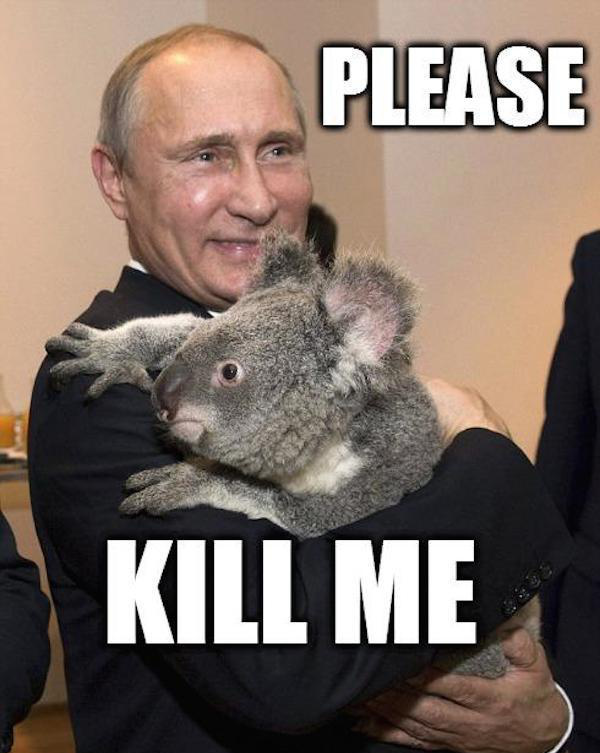 Russia made it illegal to publish Putin memes, so here are