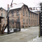 Some idiot thought installing mist showers at Auschwitz was a good idea