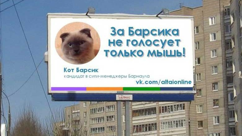 A town in Siberia has given further proof that 2016 is the year of the political outsider, after declaring they want to be ruled by a cat.