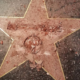 deadstate Donald Trump Star Destroyed