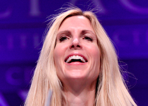 Ann Coulter thinks Israel-style sniper killings on the Mexican border are a good idea
